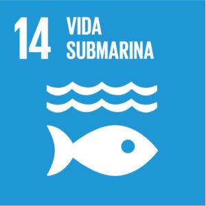 Dia mundial dels oceans (8 de juny)